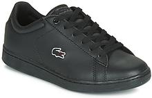Lacoste Sneakers CARNABY EVO BL 3 SUJ Lacoste