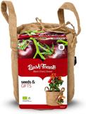 Tomater - odlingsset 'Black Cherry'