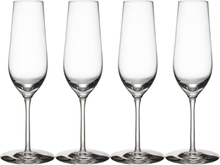 Morberg Collection Champagneglas 24 cl 4-pack