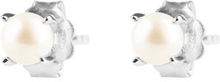 Petite pearl studs, ONE SIZE