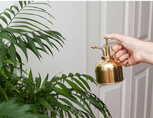Tryckspruta Plant Mister Brass