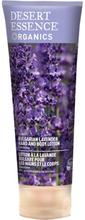 Bulgarian Lavender Hand & Body Lotion, 237 ml