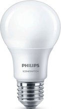 Philips Glödlampa LED SceneSwitch E27 60W 4st