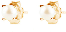 Petite pearl studs gold, ONE SIZE