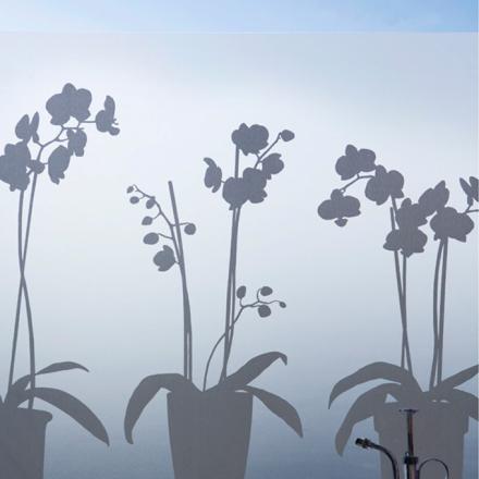 Orkidé ikkunakalvo 48x120 cm