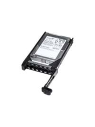 "Fully Assembled Harddisk - 300 GB - 2.5"" - 10000 rpm - SAS2 - cache"