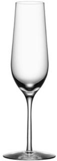 Orrefors Morberg Champagneglas 4-pack