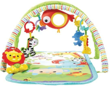 Fisher Pice 3 in 1 Musical Activity Gym