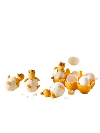 Sett med 4 kyllinger i egg
