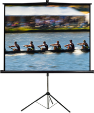 "LTC 112"" tripod Projector Canvas"
