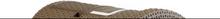 Curver Kattlåda med tak 51x38,5x39,5 cm Mocca 400461