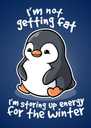 I'm not getting fat, I'm storing up energy for the winter