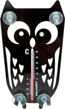 Pöllö lämpömittari musta