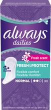 Dailies Fresh Normal Liner, Always Mensskydd