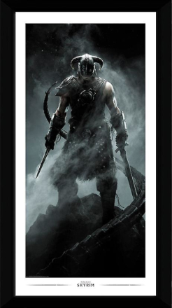 Skyrim Dragonborn samler trykte 50x100cm