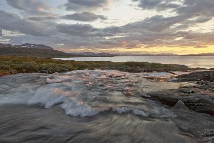 Stream in Padjelanta National Park, Sweden Tapetit / tapetti 100 x 100 cm