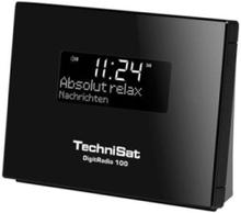 DAB radio tuner DigitRadio 100 -