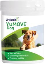 Lintbells Yumove Dog -ravintolisä - 120 tablettia