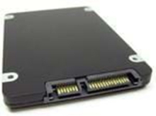 enterprise - solid state drive - 100 GB