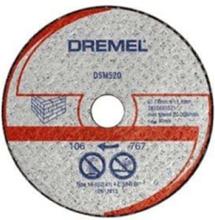 DSM520