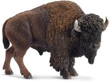 Wild life American bison
