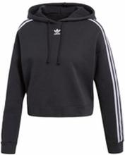 Adidas Bluza adidas cropped cy4766