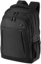 Business Backpack 17.3