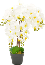 vidaXL Konstväxt Orkidé med kruka 60 cm vit
