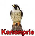 Fågelskrämma: Falk