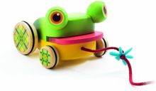 Djeco - Croafroggy