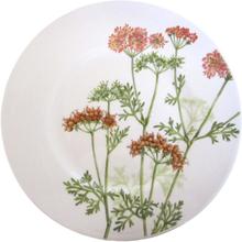 Villeroy & Boch Althea Nova plate, 22cm