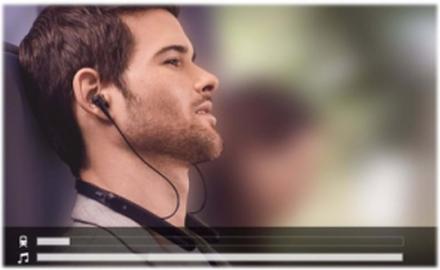 WI-1000X - hovedtelefoner med mik. - Svart