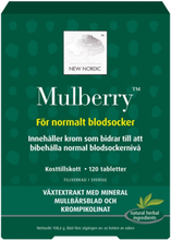 New Nordic | Mulberry