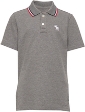 Polo T-shirts Polo Shirts Grå Abercrombie & Fitch