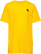 Basic Crew T-shirts Short-sleeved Gul Abercrombie & Fitch