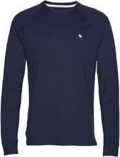 Pop Icon Crew T-shirts Long-sleeved Blå Abercrombie & Fitch