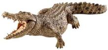 Wild life Crocodile