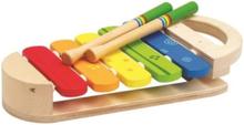 - Rainbow Xylophone