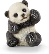 Wild life Panda cub. playing