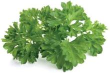 Smart Garden Refill 3-pack - Parsley