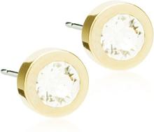 Blomdahl Grand Bezel 8mm Crystal Örhängen Guldfärgad Medicinsk titan
