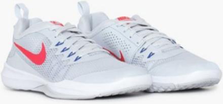 Nike Nike Legend Trainer Träningsskor Platinum