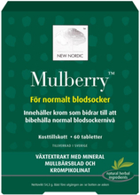 New Nordic   Mulberry