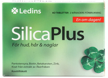 Ledins | Silica Plus