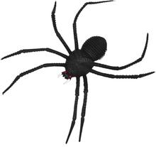Spindel med Långa Ben