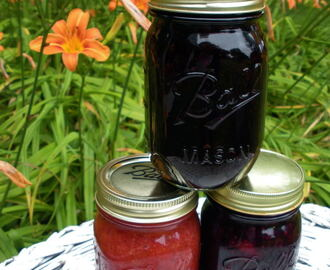 Jams: Strawberry Rhubarb, Blueberry, & Blackberry