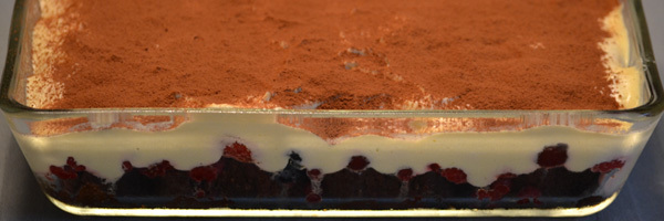 Rood fruit tiramisu