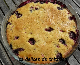 Gâteau express aux fruits rouges