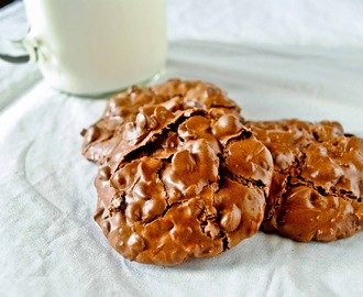 Flourless Chocolate, Almond, and Coconut Cookies (Gluten Free and Low Fat!)