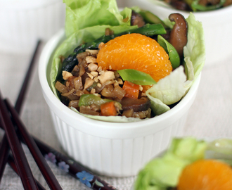 Vegetable Lettuce Wraps